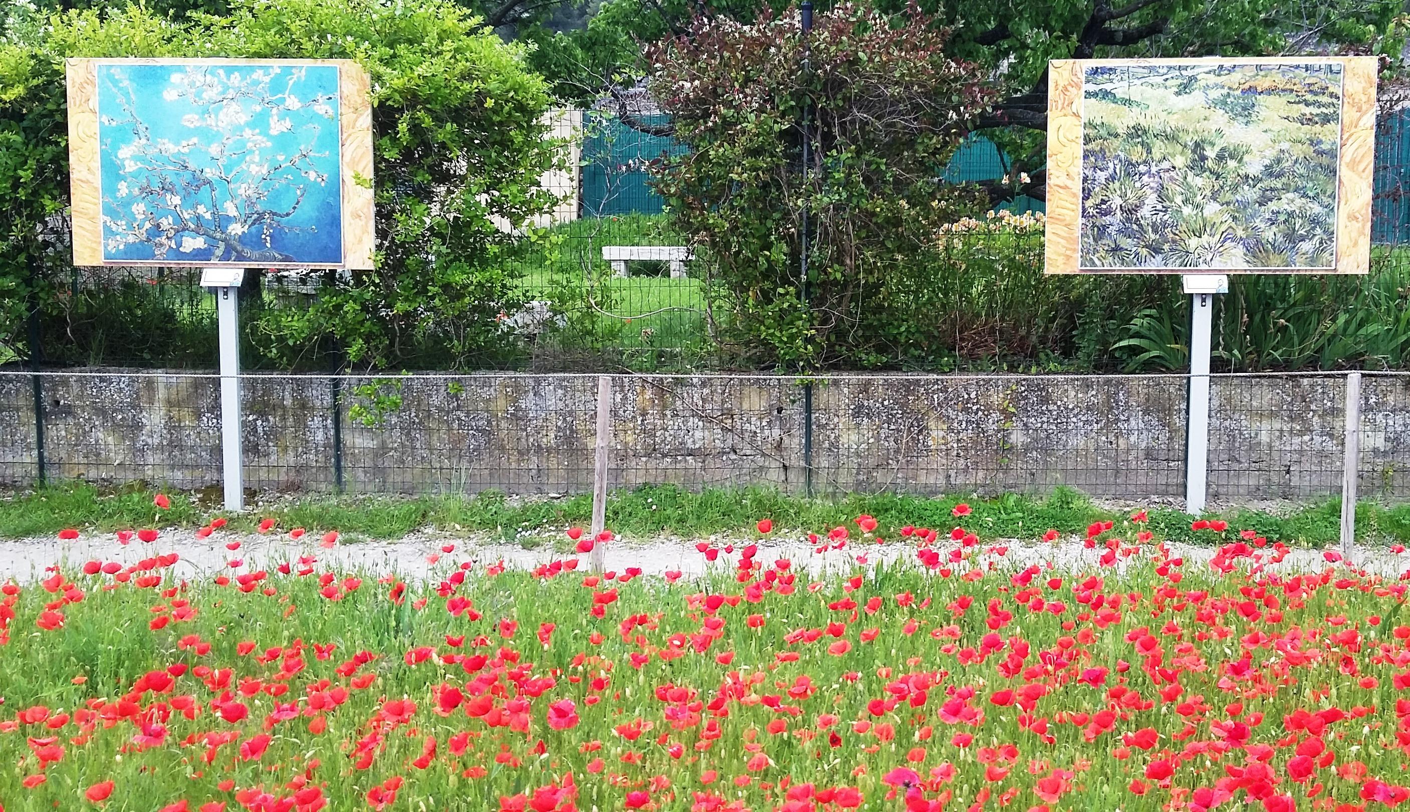 Auf den Spuren Vincent van Goghs